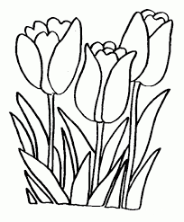 A Single Flower Free Printable Coloring Pages For When They Flower ...