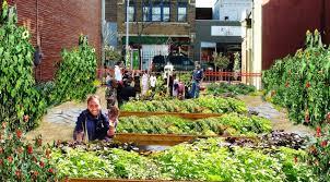 community gardens. why-community-gardens-are-important community gardens t