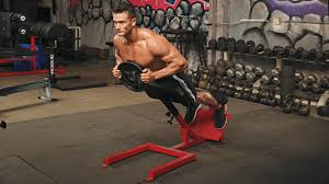 a 45 degree back extension with weight plate is a good variation to target your erectors