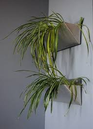 An Idea for Making Wall-Mounted Metal Planters