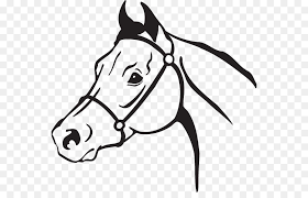 quarter horse head clip art. Simple Horse Clip Art American Quarter Horse Openclipart Arabian Horse Mustang  Mustang And Head Art