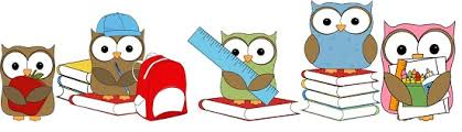Image result for owls at school