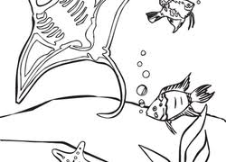 If you liked these sheets you are going to love the weather coloring sheets as they too combine coloring and word tracing. Ocean Coloring Pages Printables Education Com