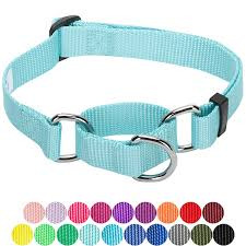 Blueberry Pet Collar Size Chart With Personalization Options No Buckle Blueberry Pet Spring