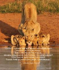 lioness and cubs quotes. Perfect And Lion And Lioness Love Quotes With Cups At Water To Cubs I