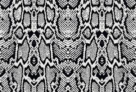 Python Pattern Adorable Snake Python Skin Texture Seamless Pattern Black On White