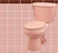 decorate a burdy and pink bathroom