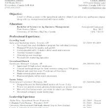 first resume examples sample resume first job sample professional resume