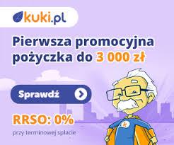 Kuki — pożyczka chwilówka online do 10 000 zł - netpozyczka24.pl