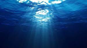 Ocean Floor Wallpaper ...