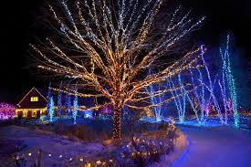 best botanical garden holiday lights