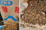 「魚粕」の画像検索結果