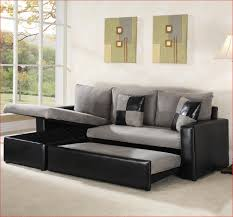 Sofas Fold Out Sofa Sleeper Sectional King Size Sofa Bed Best Sofa