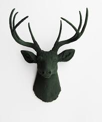 real stag head wall decoration