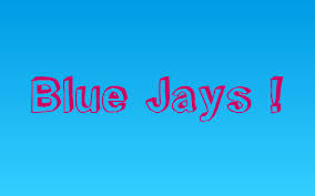 The Flight Of Blue Jays by Briana Morton