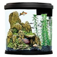 petsmart goldfish tank. Fine Petsmart Top Fin 35 Gallon Enchant Aquarium Throughout Petsmart Goldfish Tank P