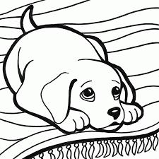 Cucciolo Di Cane Con Occhi Dolci Da Colorare Per Bambini Disegni