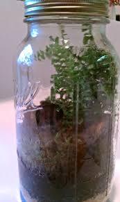 complete jar side view