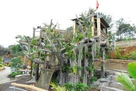 the garden also houses the largest bamboo display in the united states and a mive interactive children s exhibit the biggest in the world