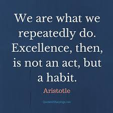 Aristotle Excellence Quote Fascinating Aristotle Quote We Are What We