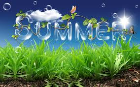 Image result for it's summer time
