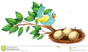 bird eggs clipart.  Bird A Blue Bird Watching The Eggs In Nest Throughout Bird Eggs Clipart E