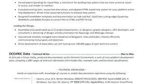 Resume Services Bangalore Thrifdecorblog Com