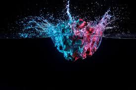 Del caos al orden: cómo aplicar la teoría de la complejidad en el trabajo |  BBVA