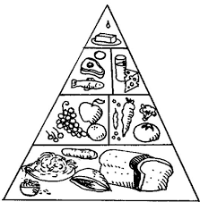 The Food Pyramid With A Nice Array Of Coloring Page Kids Coloring