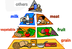 unhealthy food pyramid. Wonderful Food The Food Pyramid Should Be Your Guide To Healthy Eating Healthy And Unhealthy  Food Intended I