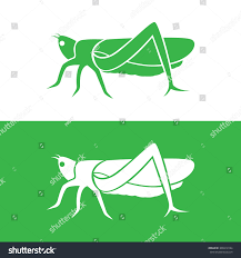grasshopper logo. vector image of an grasshopper design on white background and green background, icon logo l