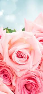 Pink roses, bouquet, glare, romantic ...