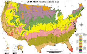 zone  gardening zone  plants and gardening advice for