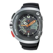 two citizen dive watches dive log memory