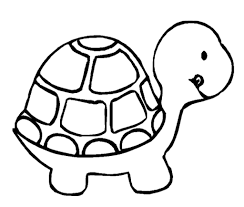 Small Picture Simple Turtle Drawing Images About Drawings On Pinterest