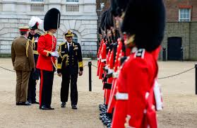 Image result for guard of honour soldier