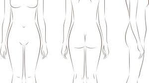 Outline Drawing Of Human Body Human Body Anatomy Outline Printable
