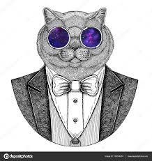 Brithish Ušlechtilé Kočky Hipster Zvíře Ruku Vykreslí Obrázek Pro