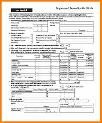 Employment Separation Certificate Form Mesmerizing 48 Certificate Of Separation Weekly Template