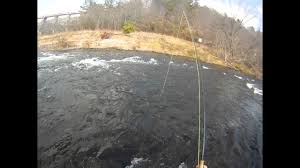 Guide Carey Thorn Trout Fishing Beavers Bend