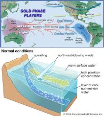 explained el nino mechanis impact on n monsoon agriculture el nino current during normal year