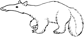 Small Picture Anteater coloring page Animals Town animals color sheet