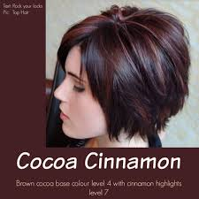 87 Dark Brown Hair With Color