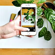 instagram post ideas. Modren Post Types Of Instagram Posts Inside Instagram Post Ideas S