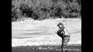 Loyalsock Creek Hatch Chart Double Haul Fly Fishing Loyalsock Creek 2010