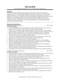 Creative It Project Manager Resume Tips Free Management Resume
