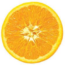 Resultado de imagem para laranja feijoada linguica