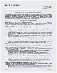 Sample Summary Statement Resume Resume Sample Summary Statement Outstanding Resume Summary Statement