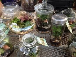 indoor rock garden ideas. Indoor Rock Garden Ideas Modren RiverRockGardenIdeas To - Dunneiv F