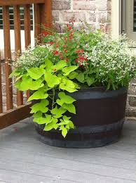simple and natural front porch planter ideas full sun